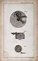 Clocks; a watch mechanism and main spring. Engraving by Mutl Wellcome V0024305EL.jpg