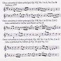 Concertos 3 1.jpeg