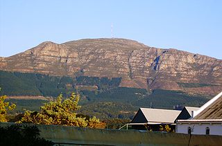 Constantiaberg Mountain on the Cape Peninsula, South Africa