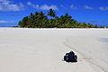 Cook Islands IMG 6178 (8451967717).jpg