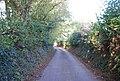 Cooper's Lane - geograph.org.uk - 1549223.jpg