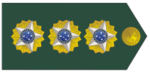 Coronel.png