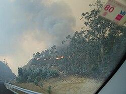 Monte queimado en Brión (esquerda) e incendio nun bosque de eucaliptos á beira do Corredor do Morrazo (dereita)