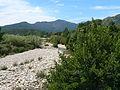 Corse SteLucie 41.jpg