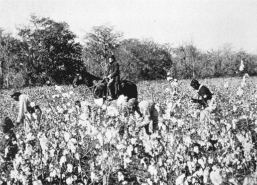 Cotton pickers and overseer around 1850