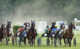 Image illustrative de l'article Trot attelé