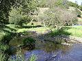 Creek running through Fiddletown, California.jpg