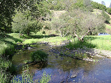 Creek running through Fiddletown, California.jpg