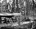 Crew with donkey engine, Vance Lumber Company, near Malone, ca 1916 (KINSEY 1337).jpeg
