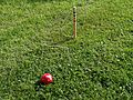 Croquet ball, goal and stake.jpg