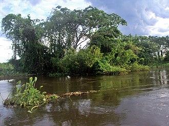 Cuiabá River - Image: Cuiabá River 10