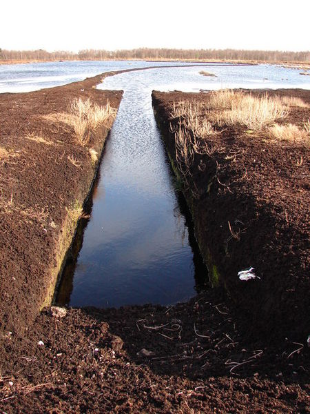 Cutting edge Nice clean lines displayed on this ditch in the Humberhead Peatlands National Nature Reserve.