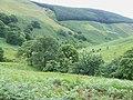 Cwm Doethie, Ceredigion - geograph.org.uk - 511321.jpg