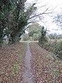 Cycleway 5 - geograph.org.uk - 1582144.jpg