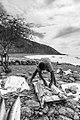 Découpe et salaison. Pêche traditionnelle à Tarafal de Monte Trigo, île de Santo Antao, Cap-Vert.jpg