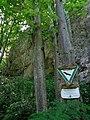 DE-BW-RT ND Schwanenbergfels (Schafwäschefels) DSC01180.jpg