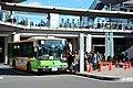 Day 1 - bus (39750550303).jpg