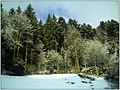 December Black Mountains Foret Noir - Master Mythos Black Forest Photography 2013 Grand Glotter Valley Germany - panoramio (13).jpg