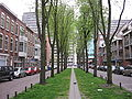 Den Haag - Nieuwe Haven.jpg