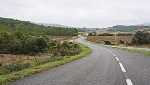 Saint-Chinian AOC - A road surrounded by the vineyards of the Saint-Chinian AOC