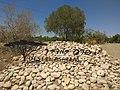 Desert ashram.jpg