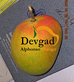 Devgad Alphonso Mango Original Pic by Devgad Taluka Mango Growers Co-op Society.jpg