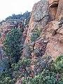 Devil's Bridge Trail, Sedona, Arizona - panoramio (52).jpg
