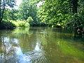 Drawa rzeka piękna i czysta - panoramio.jpg