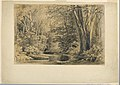 Drawing, A Brook in the Woods, 1854 (CH 18566645).jpg