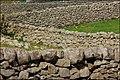 Drystone walls near Kilkeel - geograph.org.uk - 583413.jpg