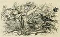 Dumas - Le Chevalier de Maison-Rouge, 1853 (page 224 crop).jpg