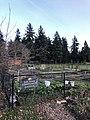 Earl Boyles Community Garden.jpg