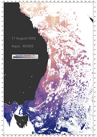 Coral Sea - Thermal profile of the East Australian Current