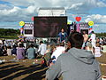 Echo & The Bunnymen performing Bestival 2010 2.jpg