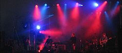Echo and the Bunnymen T in the Park 2005.jpg