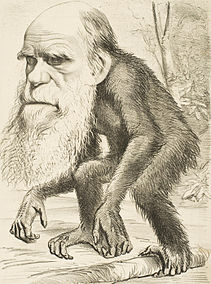 Editorial cartoon depicting Charles Darwin as an ape (1871).jpg
