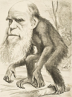 meaning of darwinism