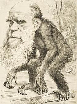 Resultado de imagen de cuestionando a darwin
