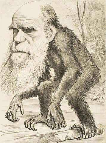 Plik:Editorial cartoon depicting Charles Darwin as an ape (1871).jpg