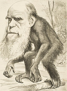 On the Origin of Species - Wikipedia, the free encyclopedia