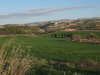 Judaean Mountains - Elah Valley (Wadi es-Sur) near Adullam with the Judean mountains in the background