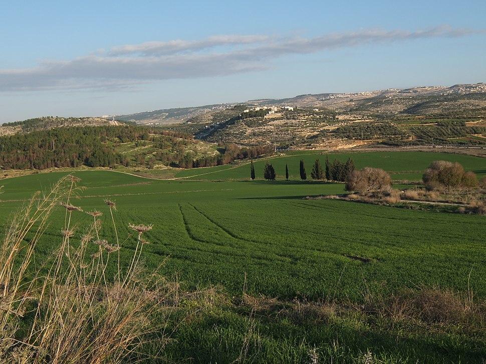 Elah Valley below Adullam