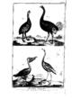 Encyclopedie volume 5-065.png