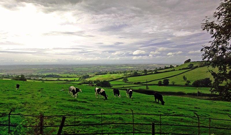 File:English Country Side - panoramio.jpg