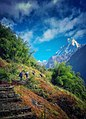 Enroute to Annapurna Base Camp.jpg