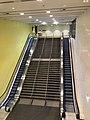 Escalators inside darling harbour convention centre.jpg