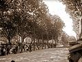 Eventos nos jardins do palacio de cristal em 1905.jpg