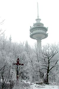 Exelberg Telecommunication Tower