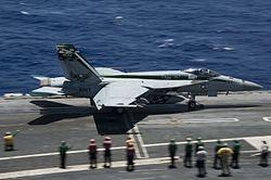 VFA-195 (U.S. Navy) - Wikipedia on
