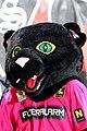 FC Admira Wacker Mödling vs. FC Red Bull Salzburg 2018-04-15 (018).jpg